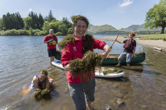 The pigmyweed at Derwentwater, with Jessie Binns in the foreground. Picture: National Trust/ Stuart Holmes
