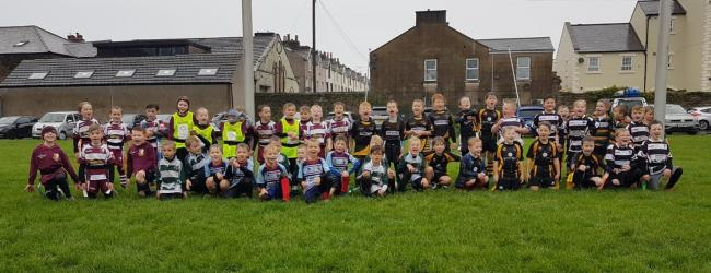 n Young players at Whitehaven Sharks under-sevens' first rugby union festival of the season